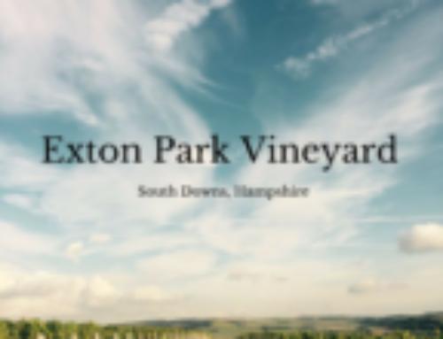 Exton Park Vineyard | Hampshire